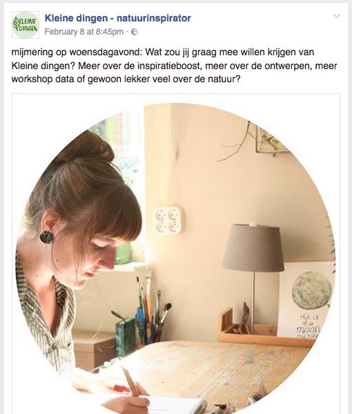 Voorbeeld blog content tips Kleine Dingen natuurinspirator in Groningen