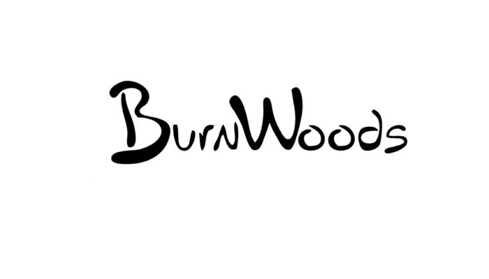 Burnwoods samenwerken Be Bricks Groningen